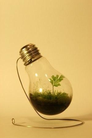 light,creative,design,funny,clever,recycle-af5e51a9ecba5de4bd5ee919f5fb2cf2_h