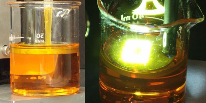 microslafeatured