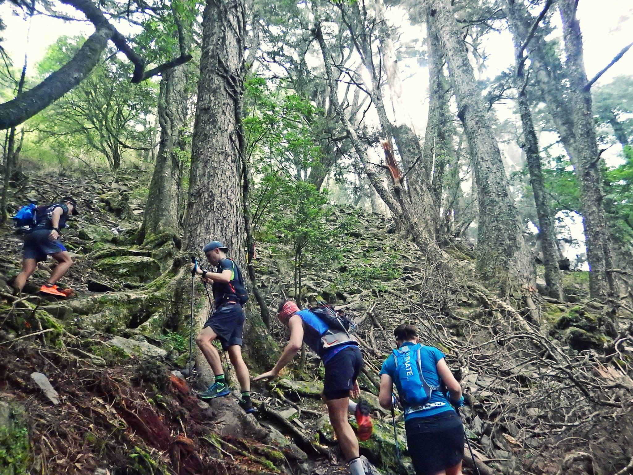 跑山獸規劃的路徑皆為自行開發的山徑(照片來源:跑山獸)