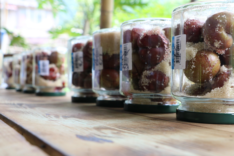 部落自種自釀的紅肉李酒(照片來源:深山裡的麵包店)